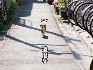 0905031