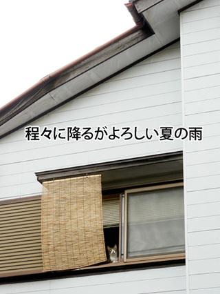 11072201